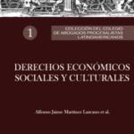 Colección del Colegio de Abogados Procesalistas Latinoamericanos 1